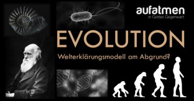 Evolution-WM am Abgrund-logo